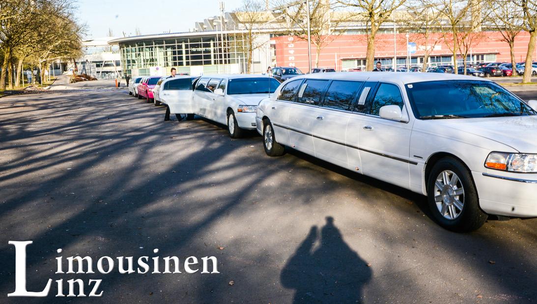 6 Limousinen1