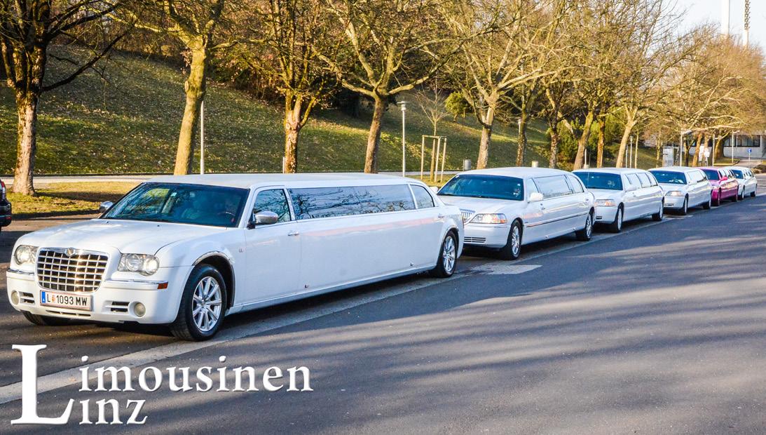 6 Limousinen2