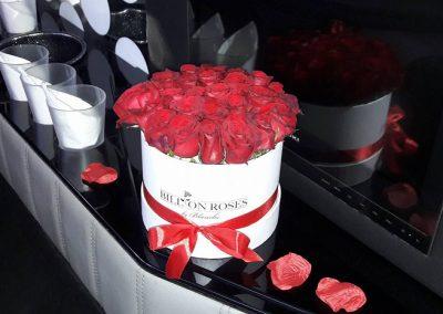 Billion Roses 20-24 Stk
